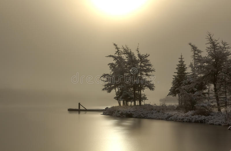 Fog and Ice. Winter morning at the lake, sun reflects of the ice and snow covers the trees stock photos