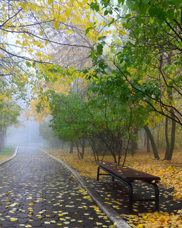 Free Fog In Autumn Park Stock Image - 21583761