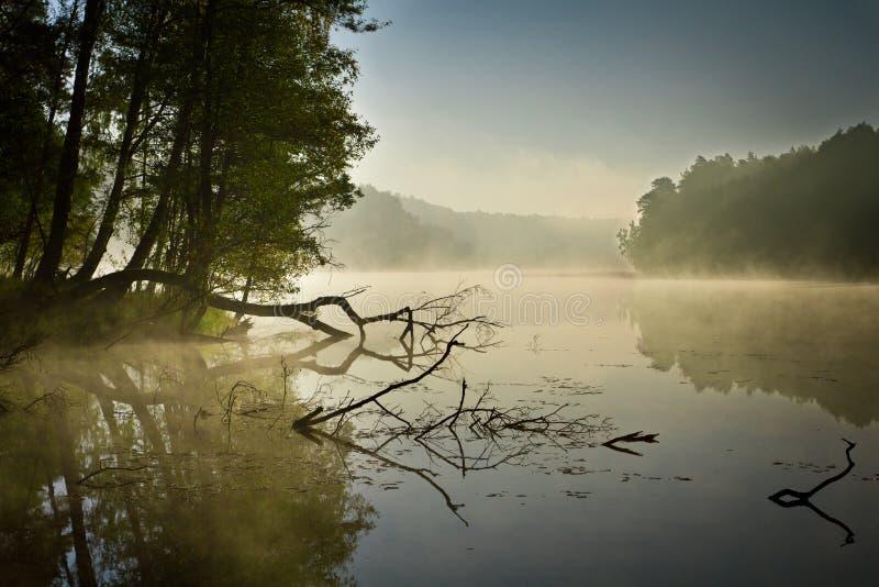 Fog and lake at sunrise stock photo