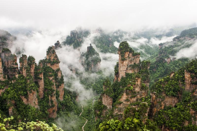 Fog lock Zhangjiajie. Zhangjiajie is a key tourist city in China. Among them, Wulingyuan Scenic Area has the rare quartz sandstone peaks and valleys in the world stock photography