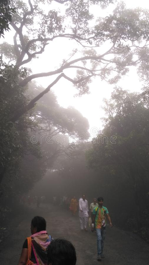 Fog in maharashtra royalty free stock image