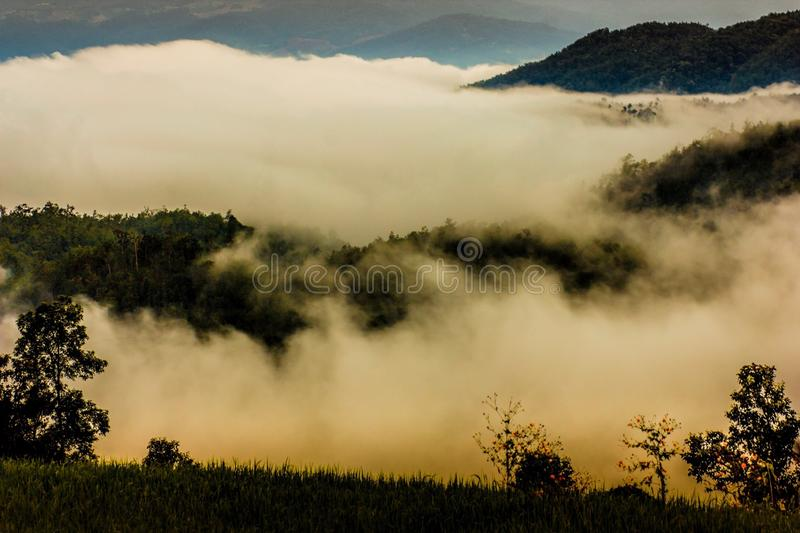 Fog, mist, haze, clouds royalty free stock images