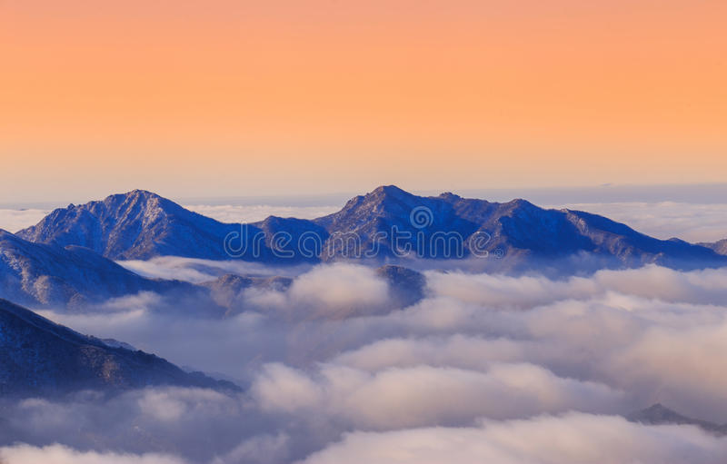 Fog At morning. royalty free stock images