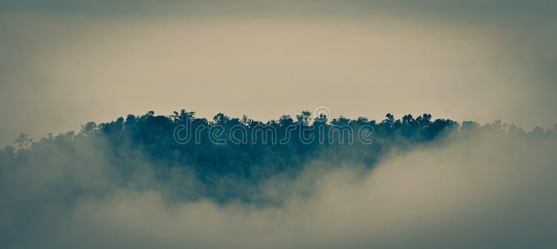 Fog on the Mountain stock photos