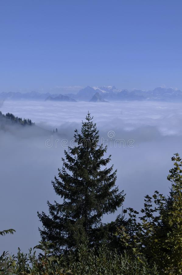 The fog-ocean over the swiss alps seen from Rigi-Kulm near Kaltbrunn in Central Switzerland stock photos