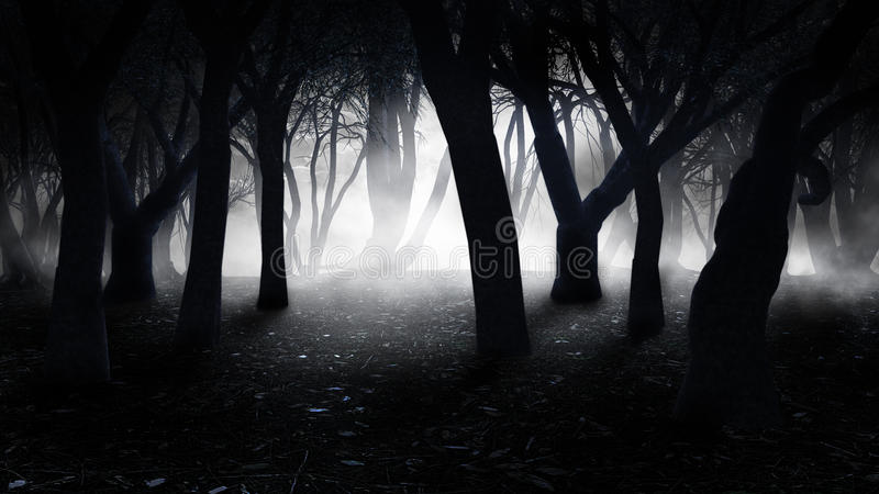 Fog in the old forest stock illustration
