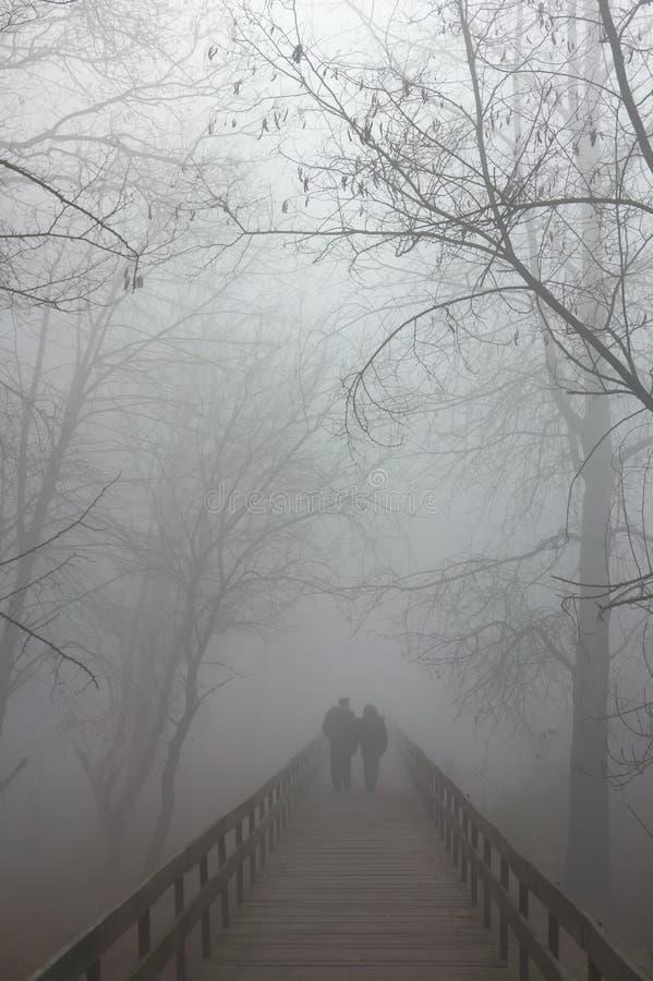 Free Fog On Bridge Royalty Free Stock Photo - 61398905