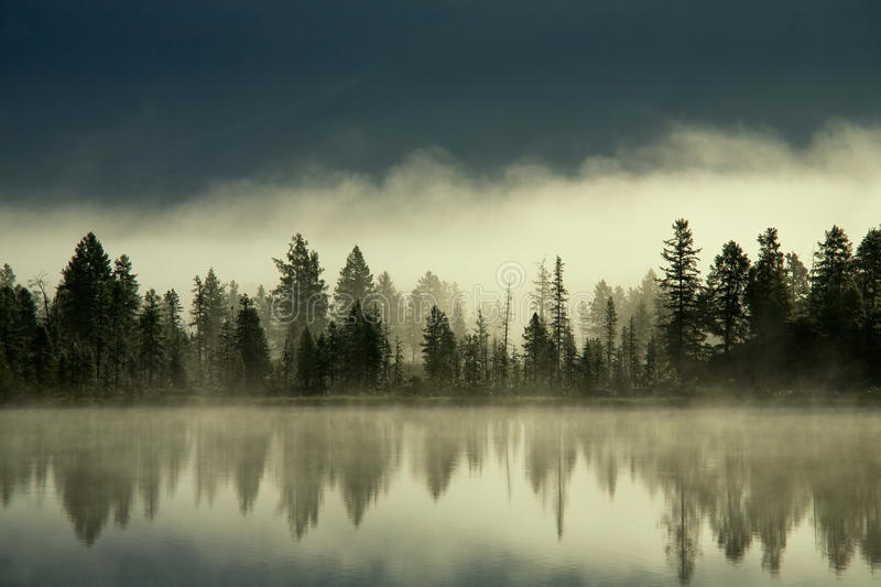 Fog over the forest by the shore of the lake. Yakutia, lake Darpir royalty free stock image