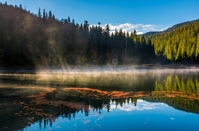 Fog rise from the forest lake in mountains stock photography