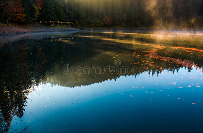 Fog rise from the forest lake near the pier royalty free stock photography