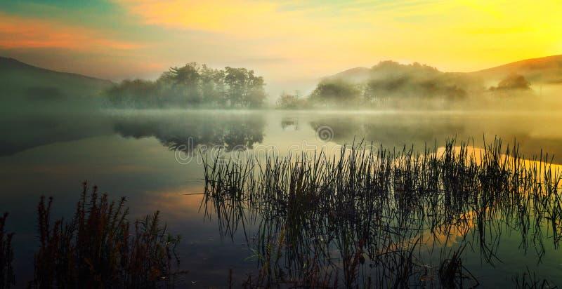 Fog Rising at the Lake stock photography