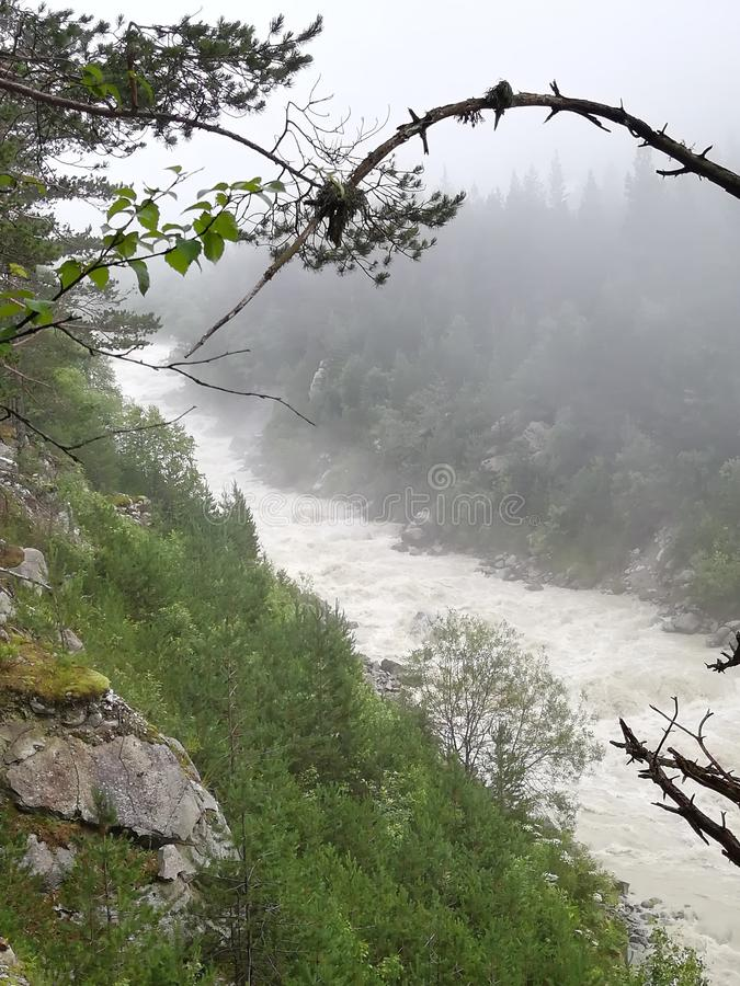 Fog on the river. Fog on the royalty free stock photos