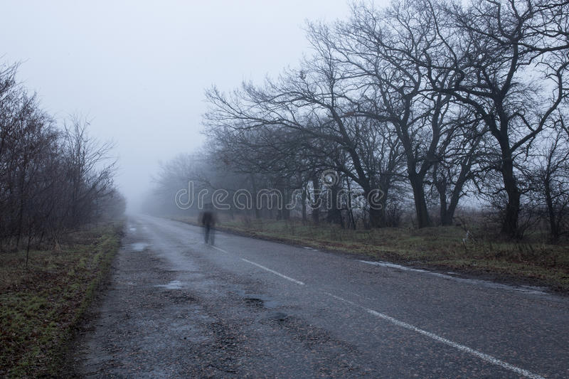 Fog on a road stock photography