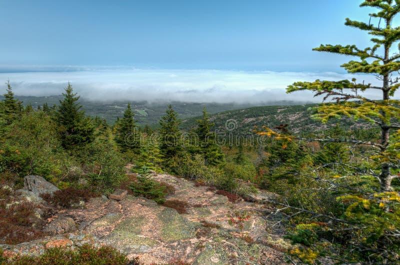 Fog Rolling in Over Coastline in Harbor Below Acadia National Park royalty free stock images