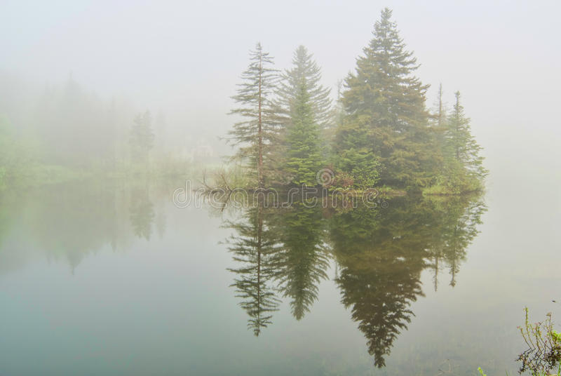Fog on Spruce Lake in Vermont stock images