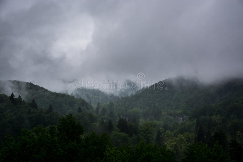 Fog and Storm over Forest stock image