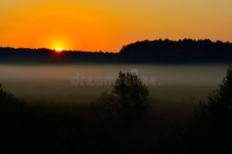 Fog at sunset royalty free stock images