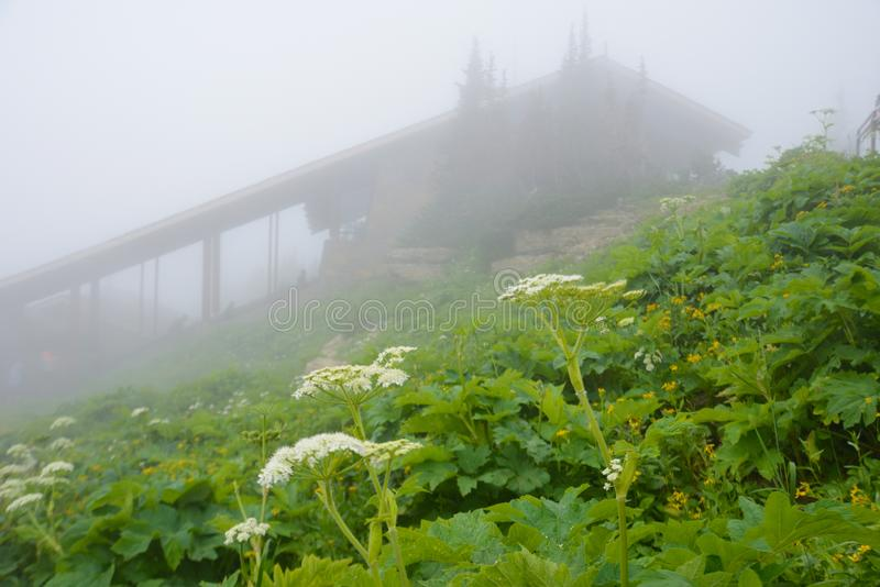 Fog surrounds a the visitor`s center at Logan`s Pas in Glacier. stock photos
