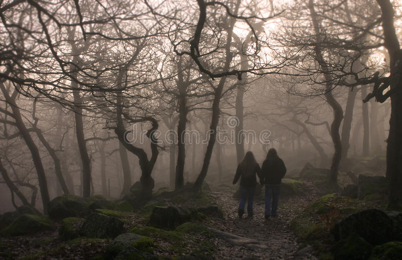 Fog walkers. Two walkers in a foggy forest stock photography