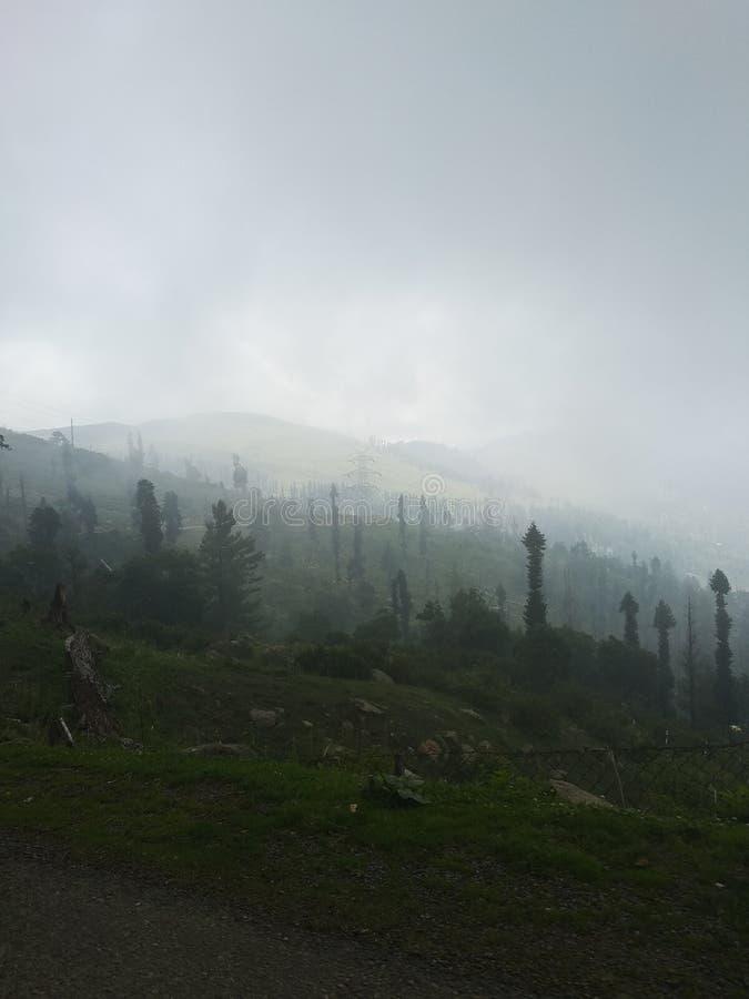 Fogg-Wetter lizenzfreie stockfotos