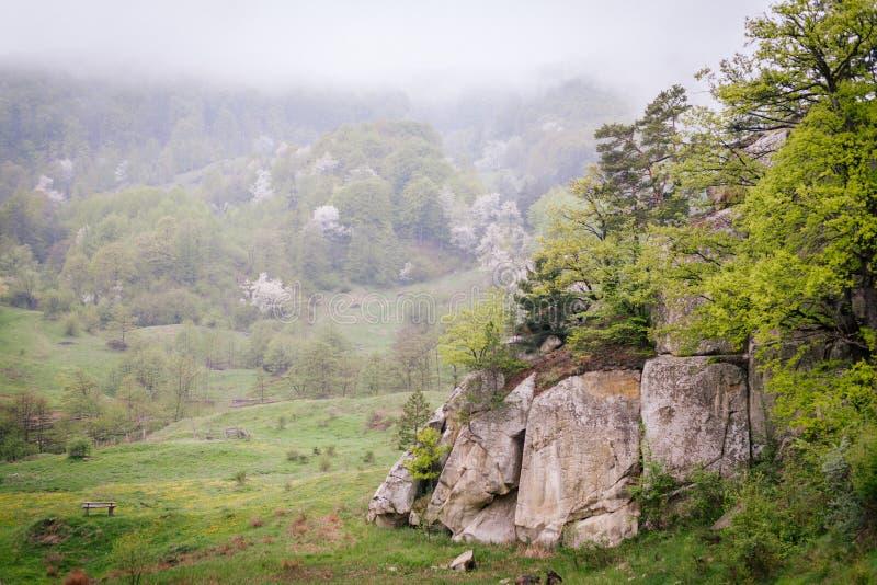 Fogginess en un campo en montañas imágenes de archivo libres de regalías