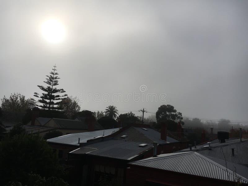 foggy stock foto