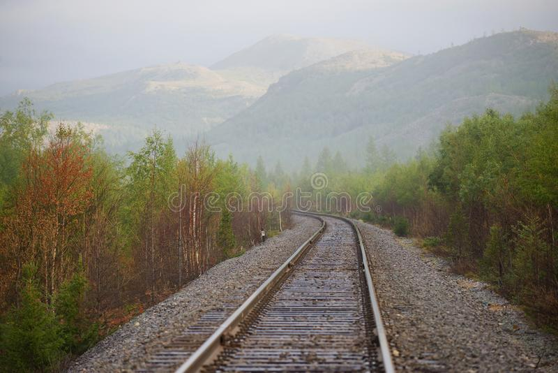 Foggy August morning on the Vorkuta-Labytnangi railway line. Ural, Russia. Foggy August morning on the Vorkuta-Labytnangi railway line. Polar Urals, Russia stock images