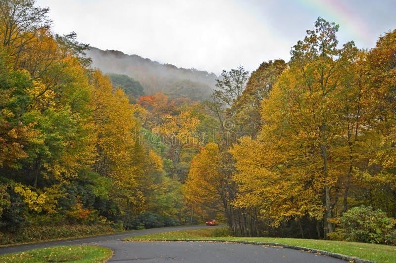 Foggy Autumn Day royalty free stock image