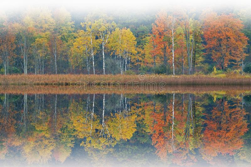 Autumn Shoreline Deep Lake in Fog. Foggy autumn landscape of the shoreline of Deep Lake with mirrored reflections in calm water, Yankee Springs State Park royalty free stock photography