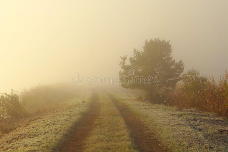 Foggy autumn morning .Lithuania landscape . stock image