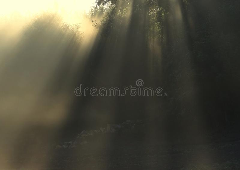 Amazing sun rays .Foggy autumn morning in Lithuania . royalty free stock photos