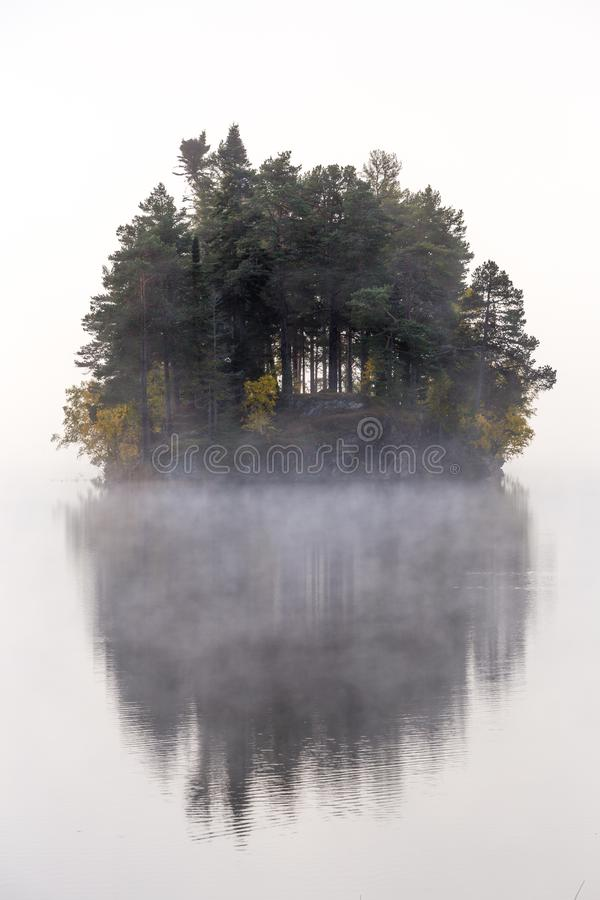 Foggy autumnal morning by the lake. Natural sunrise light. Trondheim area in Norway. Foggy autumnal morning by the lake Jonsvatnet. Natural sunrise light stock image