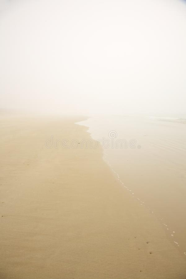 Download Foggy beach stock photo. Image of lonely, brown, grey - 27948126