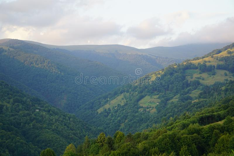 Foggy blue high Mountain in the clouds. Beautiful Carpathian mountain in the clouds. View in the summer time. Forest in the oposite mountain. Sunset time stock image
