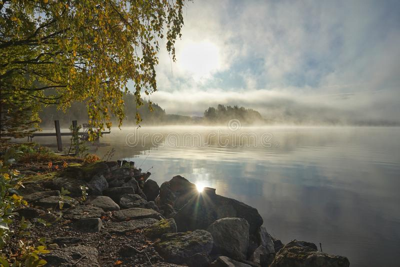 Foggy bright autumn morning on the lake royalty free stock image