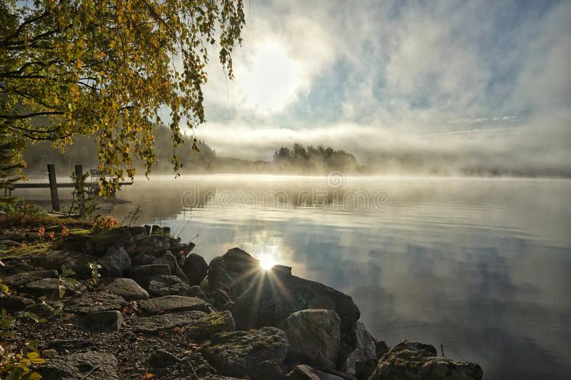 Foggy bright autumn morning on the lake royalty free stock photography