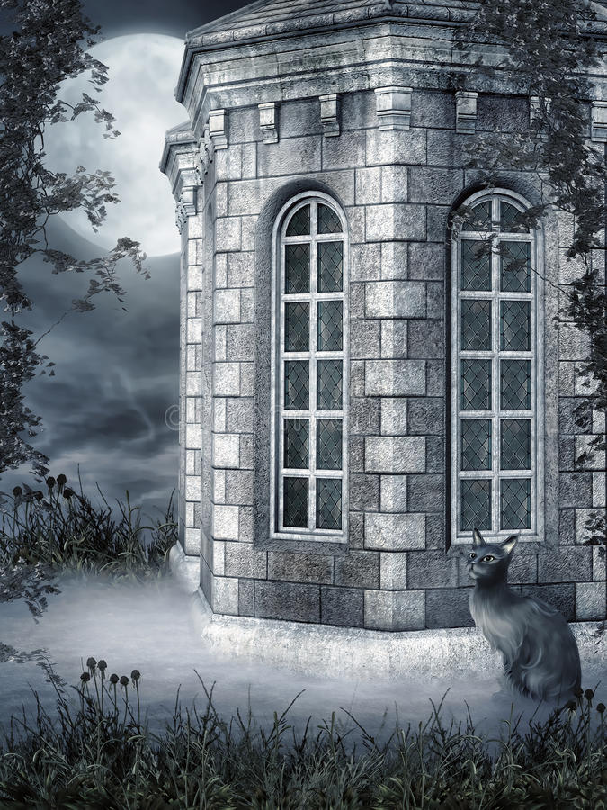 Download Foggy building with a cat stock illustration. Illustration of foggy - 33311660