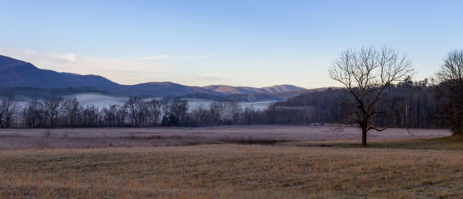 Foggy cades cove morning in great smoky mountains national park stock photography