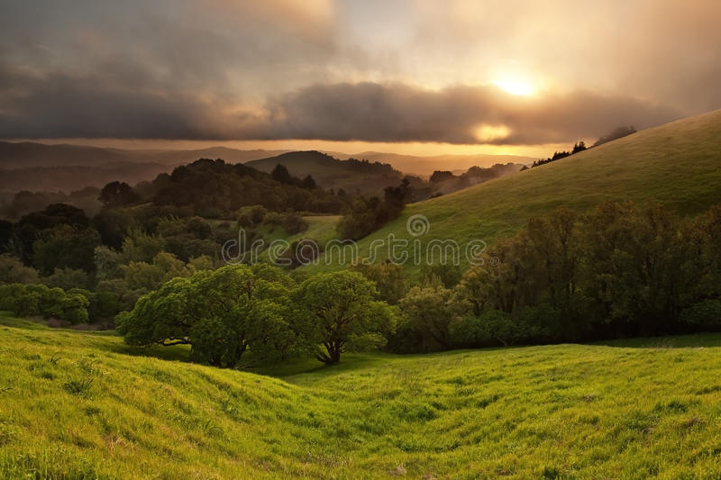Download Foggy California Meadow Sunset Stock Image - Image: 22809295