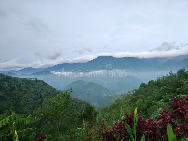 Foggy colorful mountain stock image