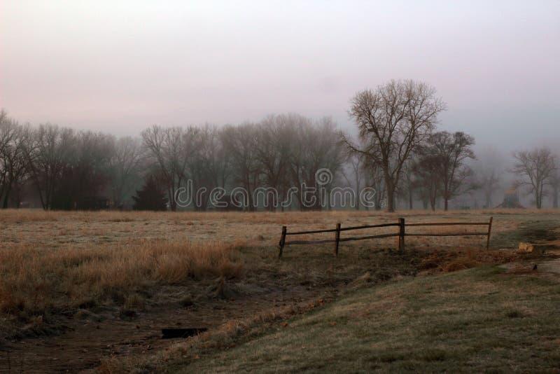 Foggy country morning across a field. Foggy country morning looking across field to tree line royalty free stock photos