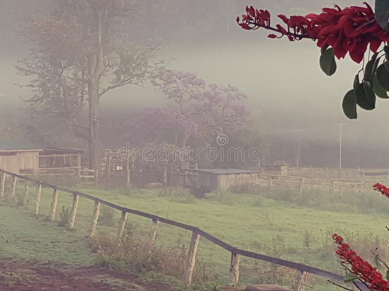 Foggy country morning paddock with farm sheds royalty free stock images