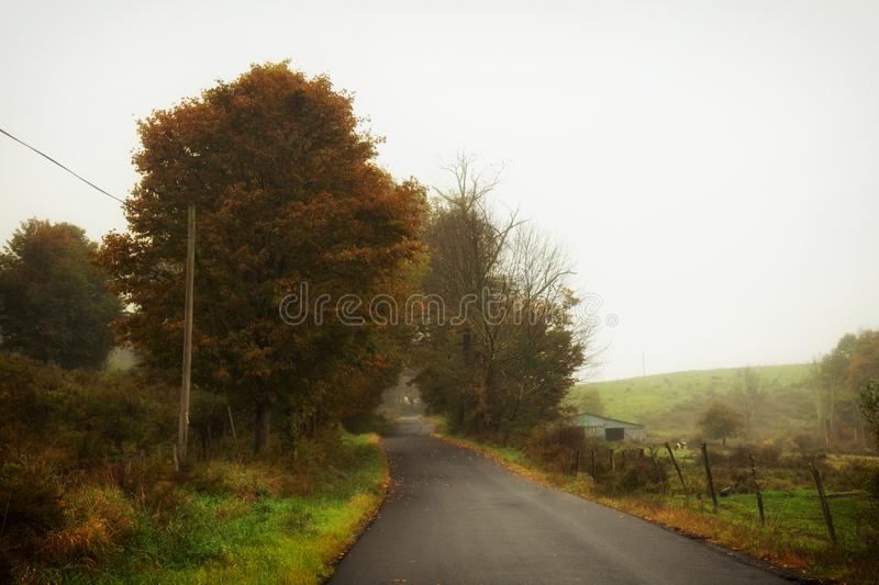 Foggy country road. A lonely country road on a foggy day in the Catskills royalty free stock photo