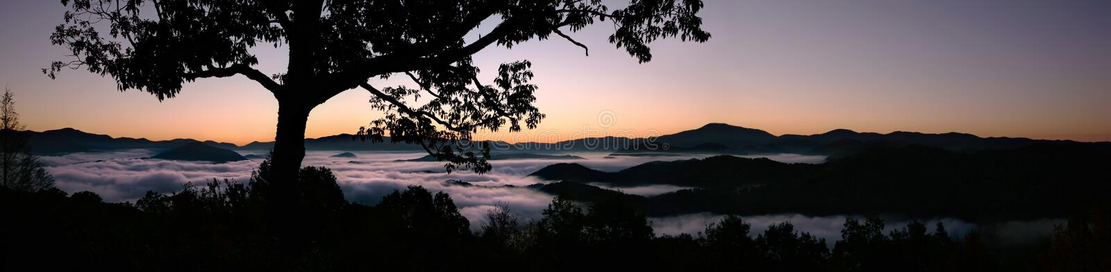 Foggy Dawn in Great Smoky Mountains. Rivers of fog populate the valley floor of the Great Smoky Mountains (Appalachian Mountains) before the sun rises royalty free stock photos