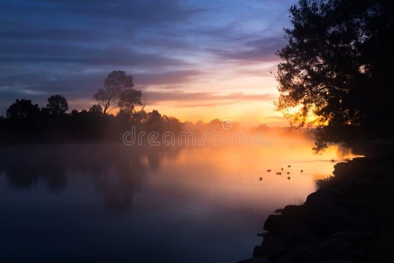 Foggy dawn skies over the billabong stock image