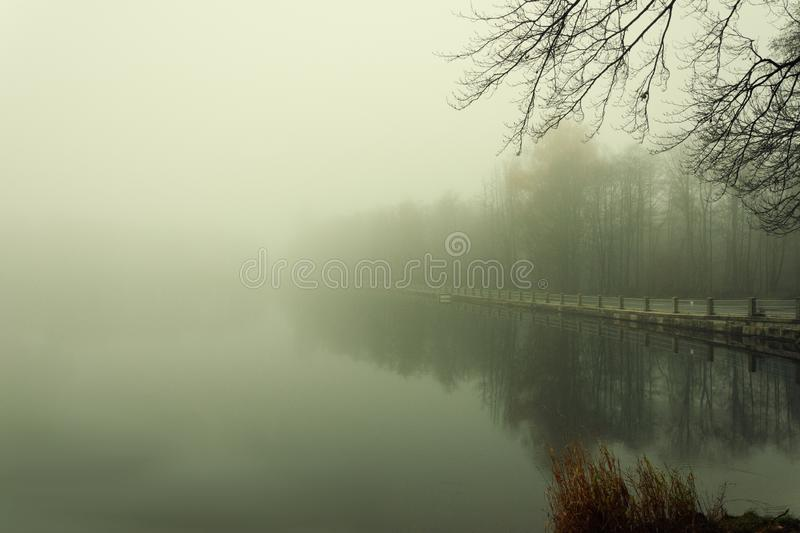 Foggy day on the small lake royalty free stock photos