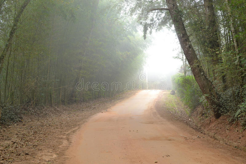 Download Foggy dirt road stock image. Image of foggy, adventure - 74135237