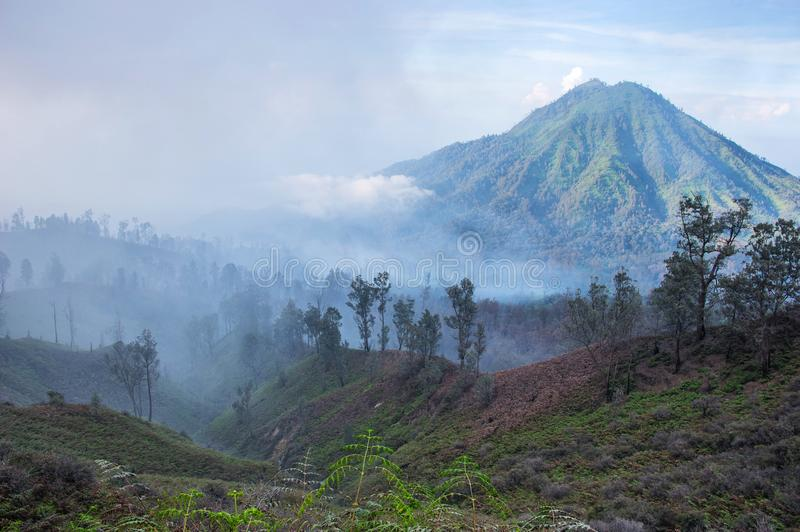 Early morning landscape with jungle forrest and volcano, Java island royalty free stock image