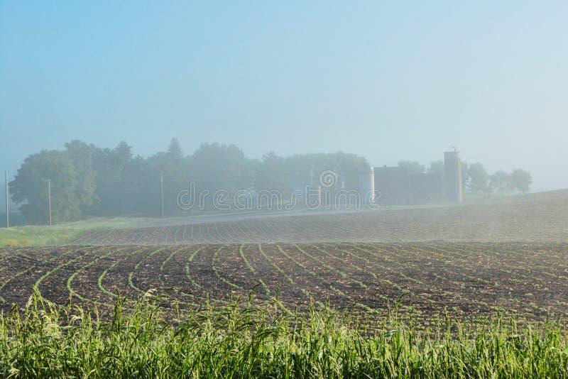 Foggy Farm Site 2 royalty free stock image
