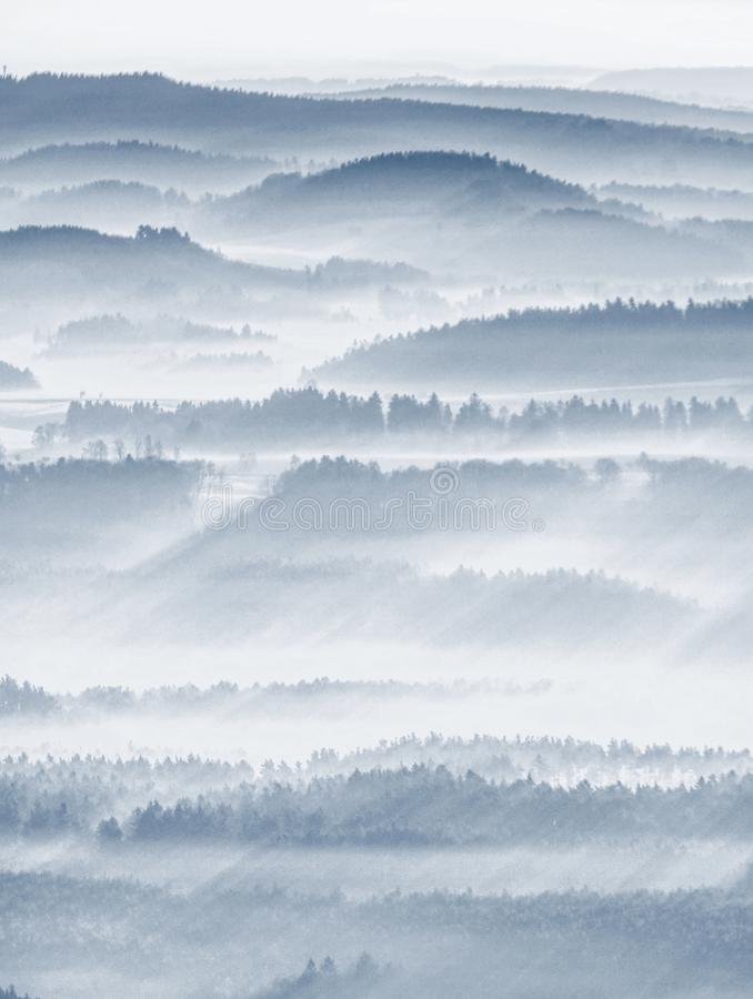 Free Foggy Forest Landscape In Morning Sun. Fantastic Areial View Stock Photos - 121812183
